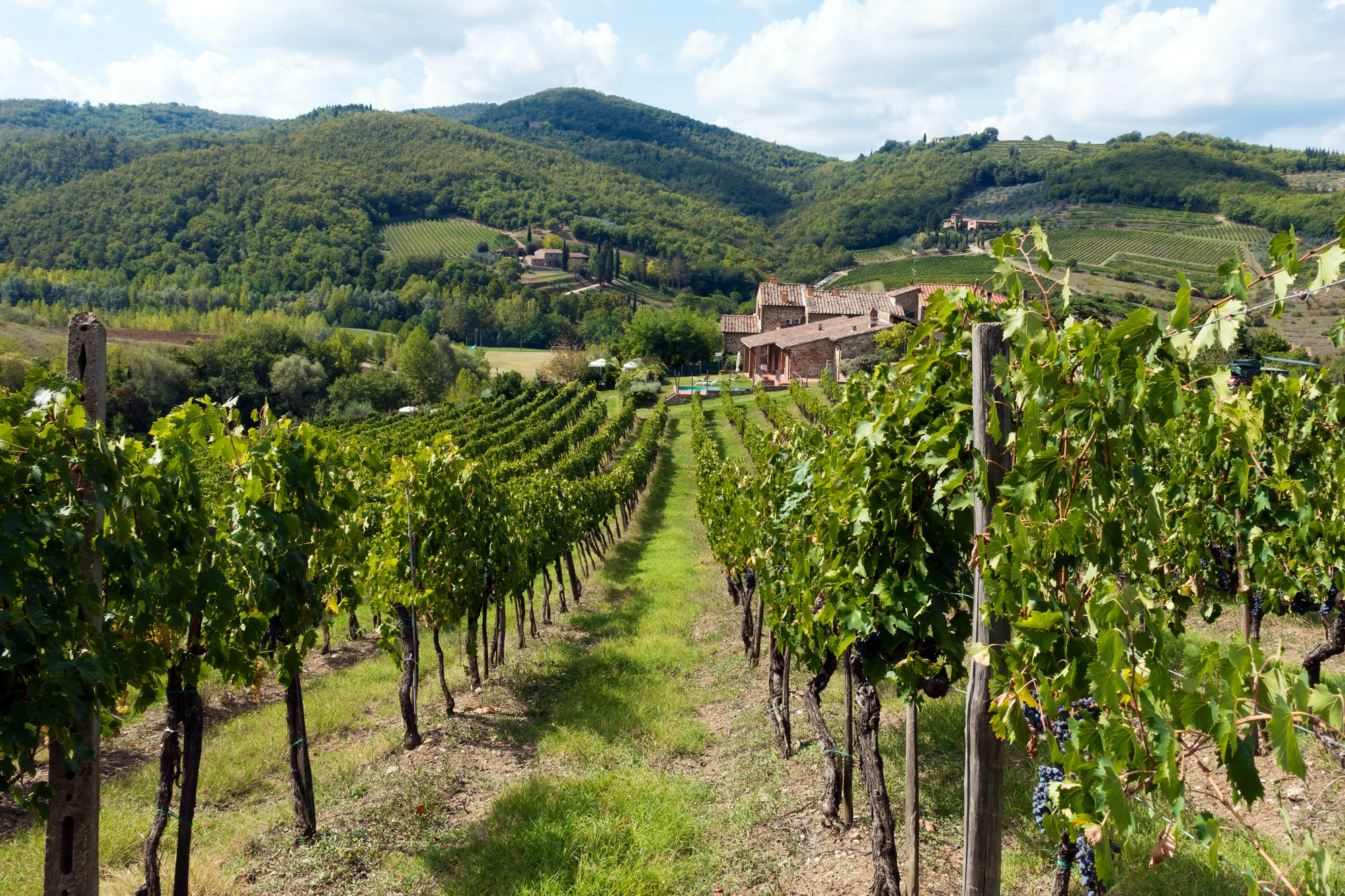 Chianti,Italy:Travel Guide to Chianti Wine Region in Tuscany