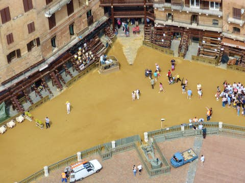 Palio in Siena: The Palio Horse Race in Siena, the Palio in