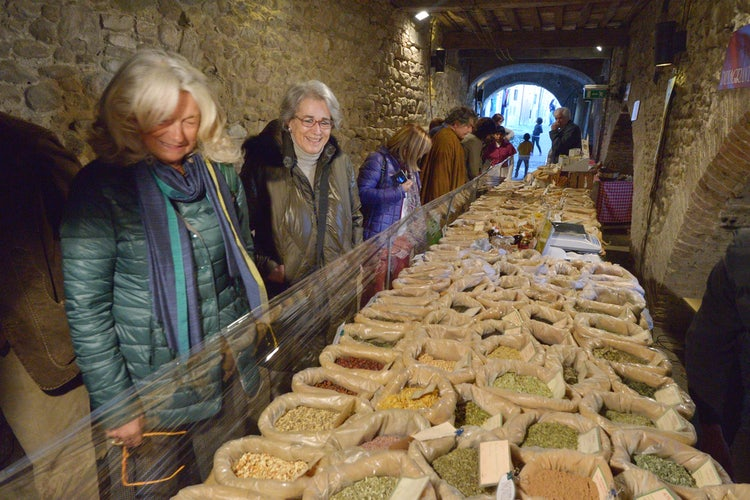 Top events to visit in November around Tuscany