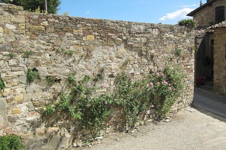 Stone wall in Panzano