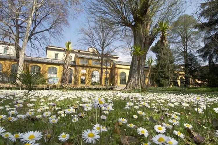 Orte dei Semplici Garden: an outdoor visit while exploring Florence
