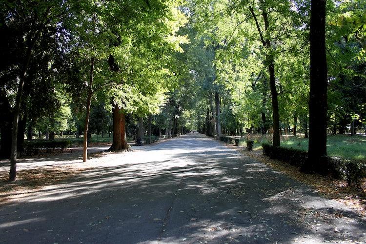 Le Casine Park: an outdoor visit while exploring Florence