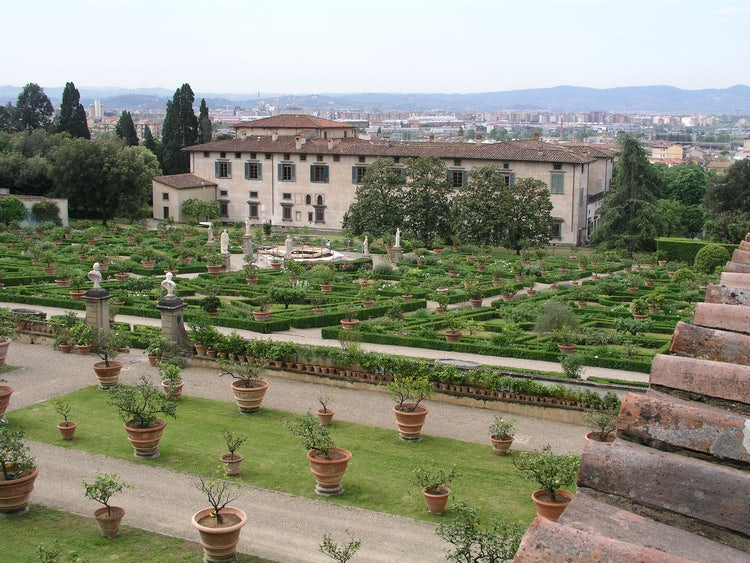 The beauty of Florence in June
