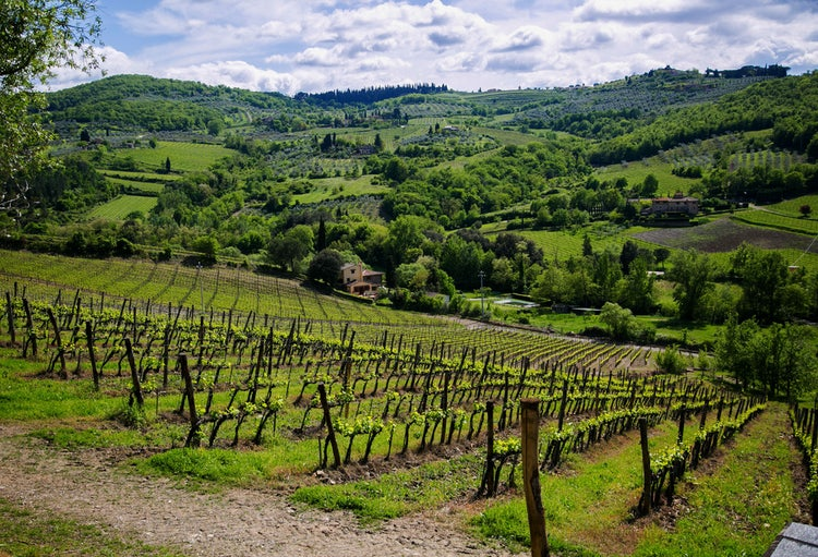 Spring time in Chianti, Tuscany