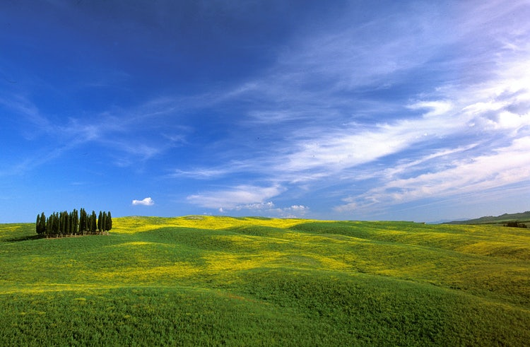 Picnic in Val d'Orcia after Easter