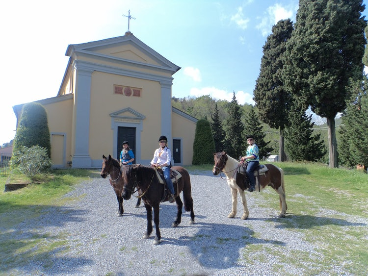 Horseback Riding: DiscoverTuscany team Reviews the Best Tours Departing from Pisa