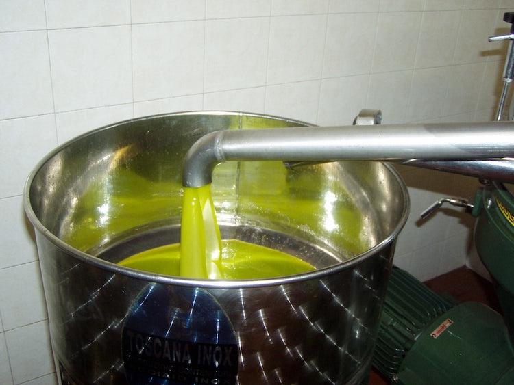 L'olio nuovo...delizioso sulla fettunta abbrustolita con un pò di aglio e accompagnata da un buon bicchiere di vino rosso.