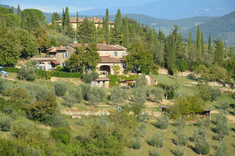 Typical Tuscany farmhouse surrounded by a relax and quite landscape at Agricola Poderino vacation apartments