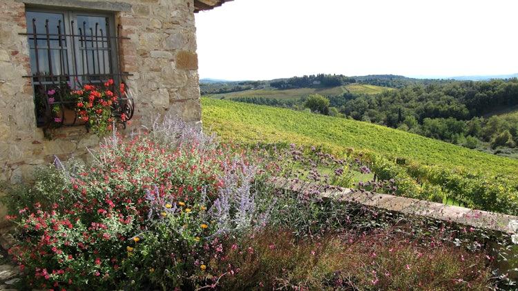 Panoramic view of Chianti from Borgo Argenina