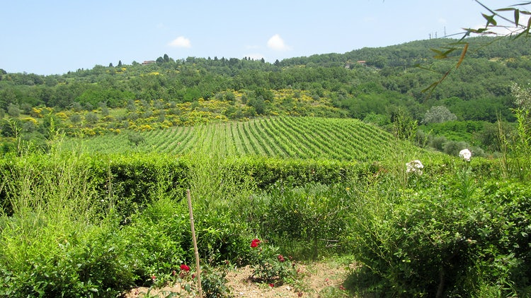 Kid-friendly Accommodations in Florence, Italy :: Double bedroom at Agriturismo Frascole