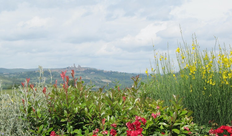 B&B accommodations near San Gimignano: Taverna di Bibbiano