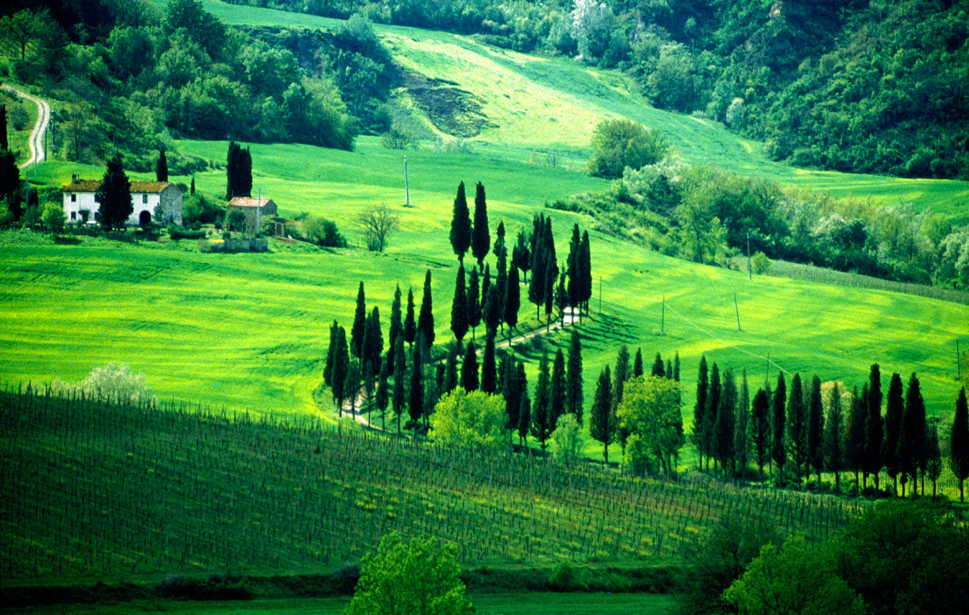 When to Go to Tuscany Average Temperatures, Climate in Tuscany to ...