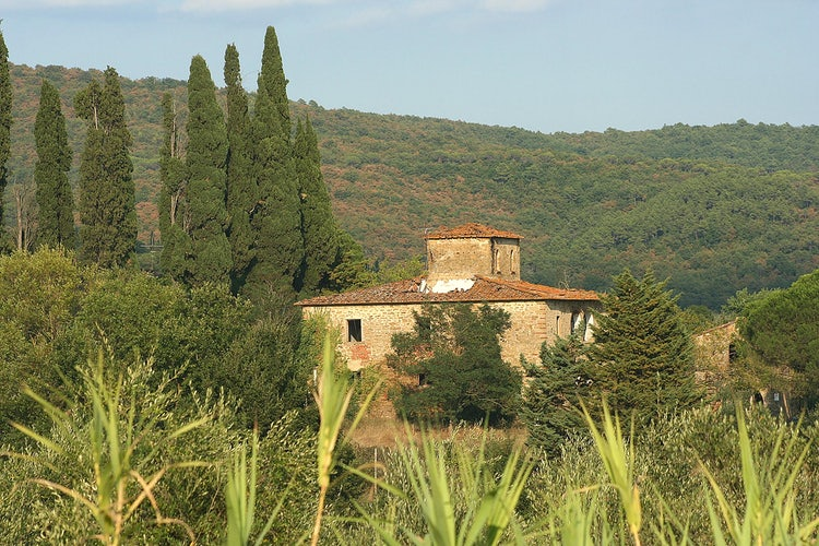 Typical Casa Leopoldina