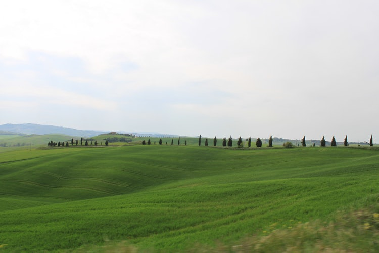 Beautiful landscapes in the Valdorcia area.