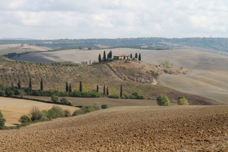 The Hills of Val d'Orcia