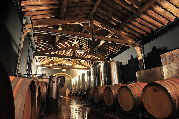 La Lastra Vineyards Cantina: The Ultimate Wine Experience