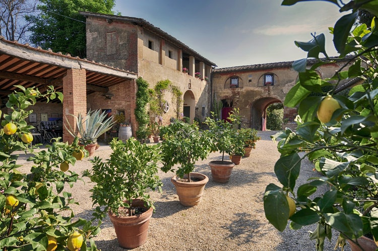 La Lastra Vineyards and B&B: The Ultimate Wine Experience