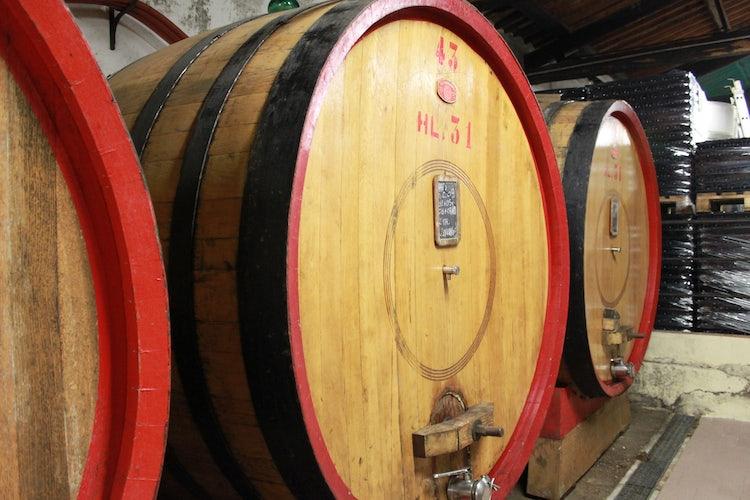 Degustazioni di vino in Chianti